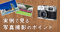 実例で見る写真撮影のポイント