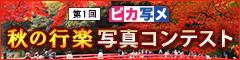 第1回 ピカ写メ秋の行楽写真コンテストコンテスト