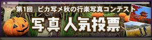 ピカ写メ秋の行楽写真コンテスト人気投票
