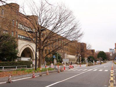 【就活生必見】東大理系学生の主な就職先はここだ!