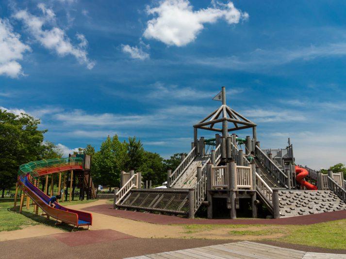 子どもがのびのび遊べる!広くておすすめの自然公園ランキング