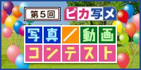 第5回 ピカ写メ写真/動画コンテスト