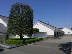 川越市立博物館