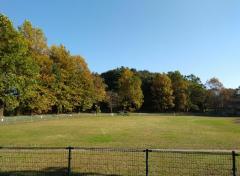 大津ケ丘中央公園