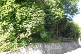 山下町緑地