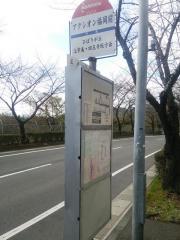 「アクシオン福岡前」バス停留所