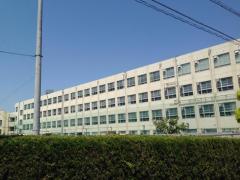 山根小学校