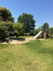 南が丘ツツジ公園