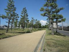 第6号りんくう野出南緑地