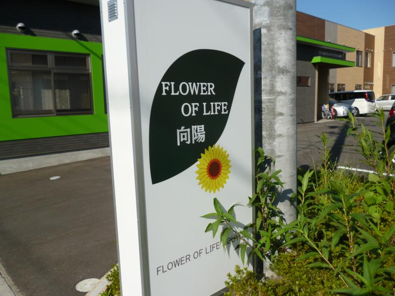 FLOWER OF LIFE 向陽