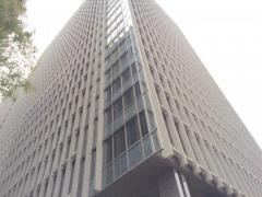 株式会社三菱ケミカルホールディングス