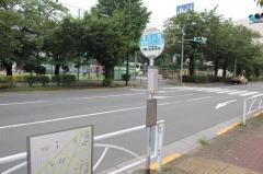 「隅田公園」バス停留所