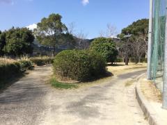 東望山公園