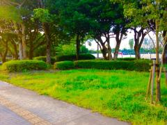 明和中央公園