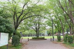 南越谷第一公園