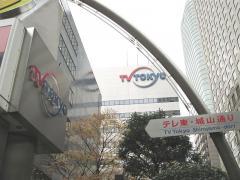 株式会社テレビ東京ホールディングス