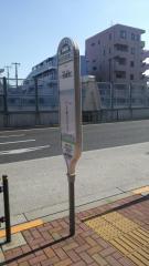 「椎名町駅南口」バス停留所