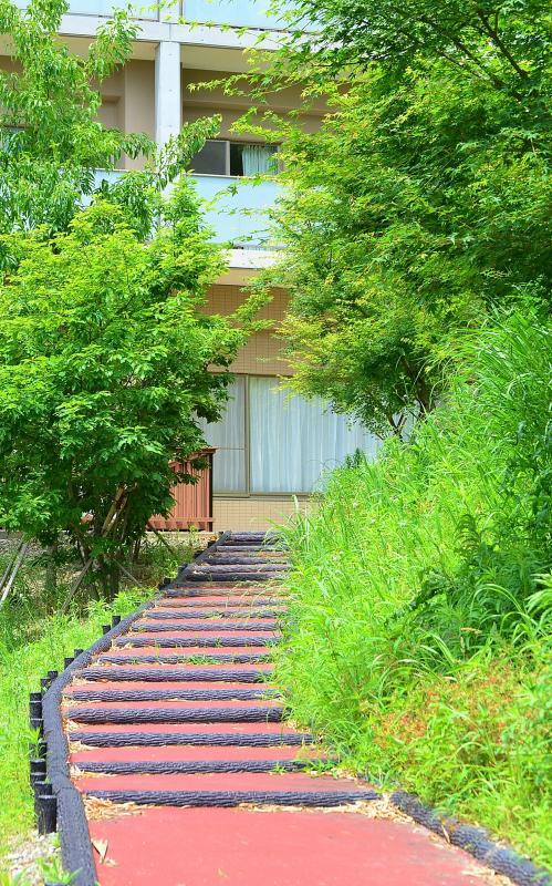 ため池横の散歩道階段