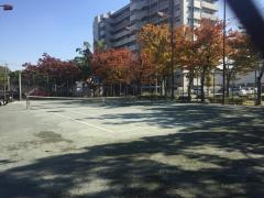 南郊公園テニスコート(熱田)