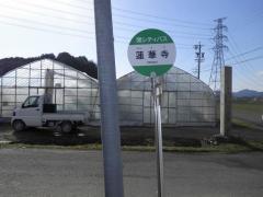 「蓮華寺」バス停留所