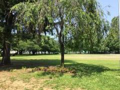 前九年公園
