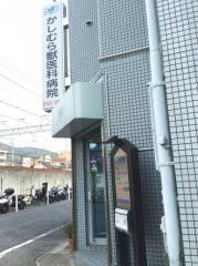 樫村獣医科病院_施設外観