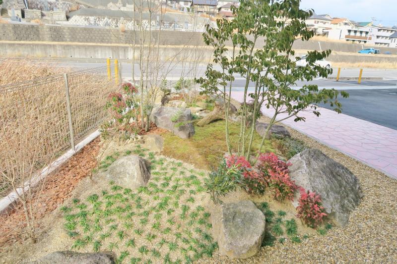 玄関前の庭