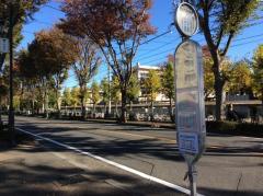 「所沢市民体育館」バス停留所