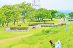 第9号美矢井橋河川緑地