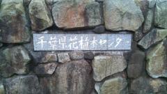 千葉県花植木センター