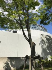 岐阜県世界淡水魚園水族館アクア・トトぎふ