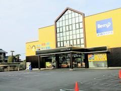 コスモスベリーズ犬山店