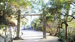 桜八幡神社
