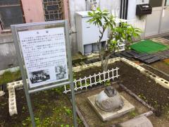 函館博物館