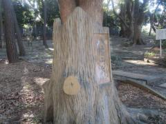 八幡山公園