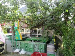 花笠果樹園