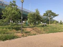 りんくう北公園