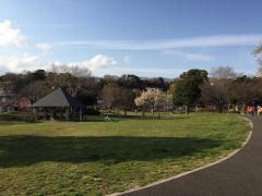 本牧和田公園