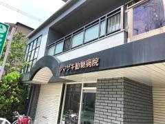 ヤマザキ動物病院_施設外観