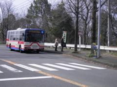 「尾崎アパート前」バス停留所