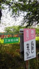 三本松公園