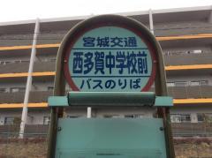 「西多賀中学校前」バス停留所