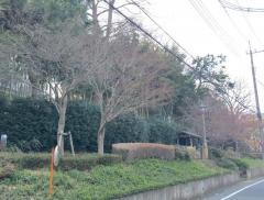 戸塚緑地第2