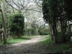 富塚八幡緑地
