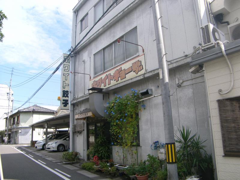 ホワイト 餃子 岐阜