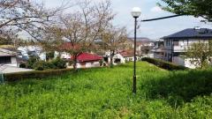 陽光台東部緑地