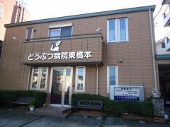 東橋本どうぶつ病院