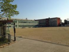 天白小学校