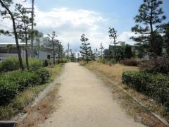 第15号りんくう羽倉崎南2号緑地