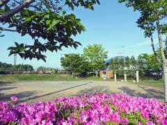 国府台中央公園